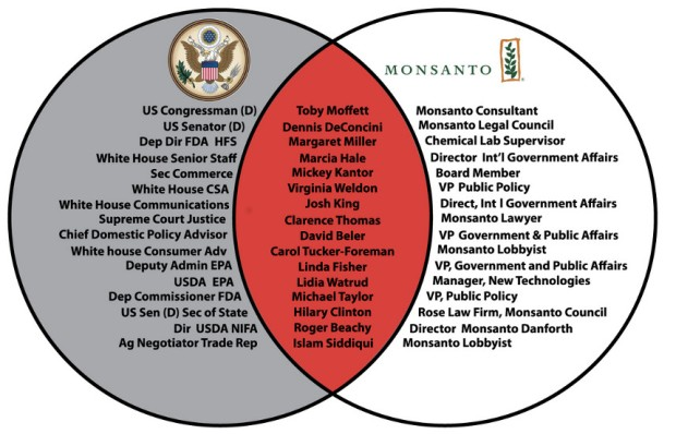 Monsanto's Crony Capitalism